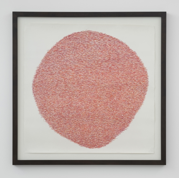 Under:Conscious: Drawing VI, 2014, Colored pencil on paper