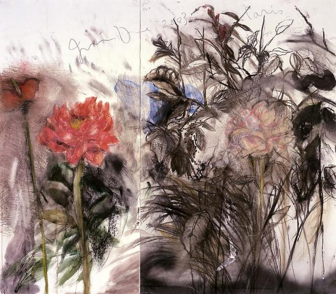 Steidl's Back Garden, 2003