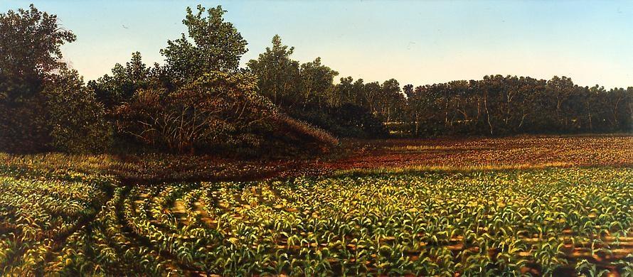 Illinois Landscape #126, 1993