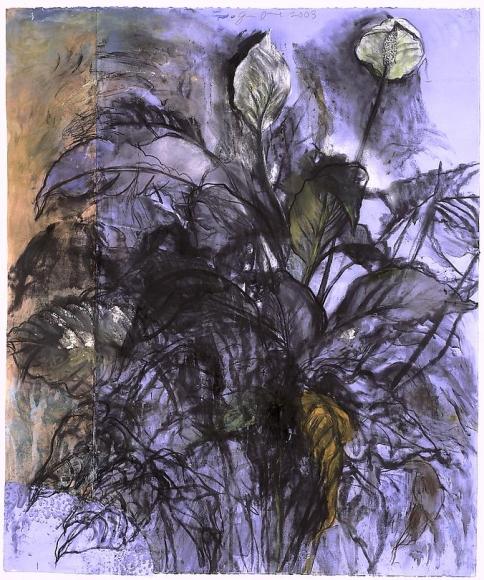 Cool Air, 107 Degrees, 2003