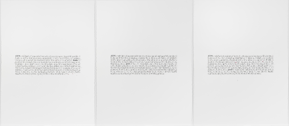bethany collins skin 1968 toner and graphite on american masters paper