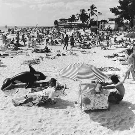 Sarasota, Florida, 1987