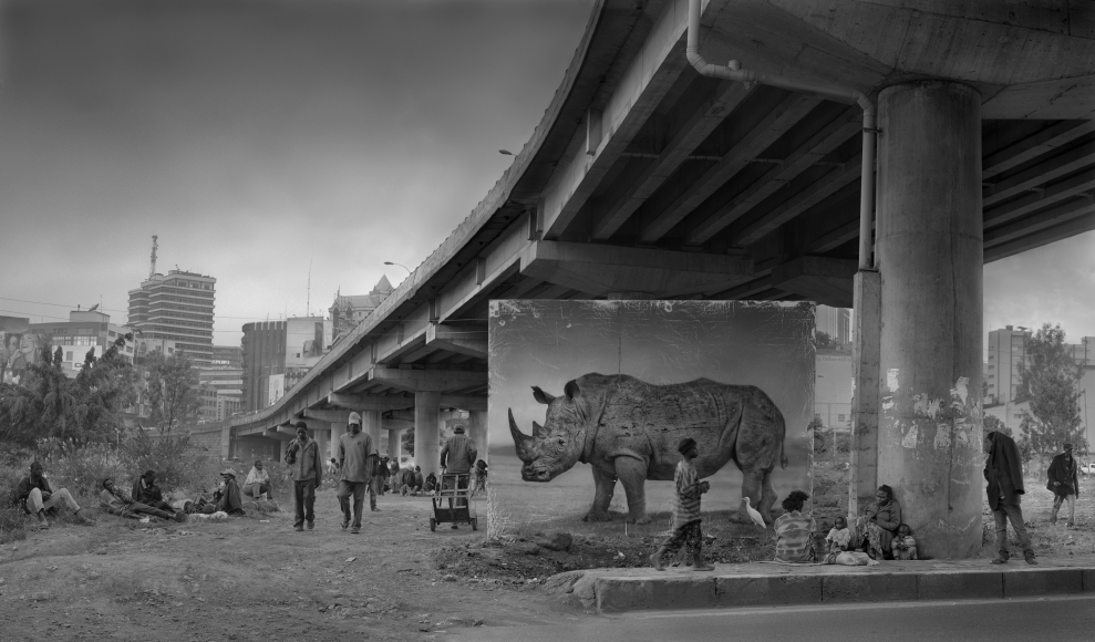Underpass with Rhino and Egret, 2014