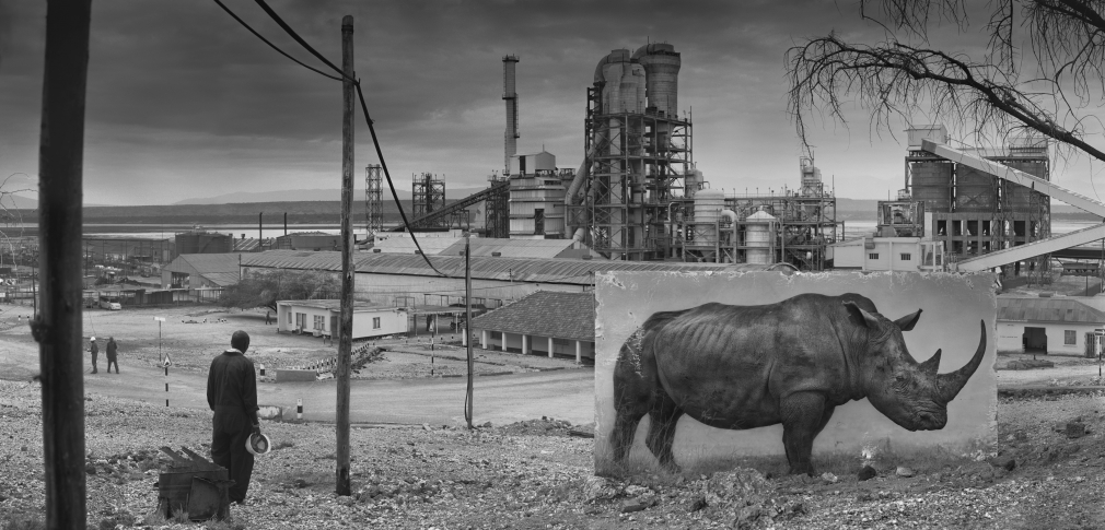 Factory with Rhino, 2015