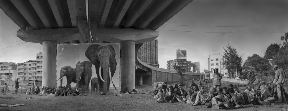 Underpass with Elephants and Glue Sniffing Children, 2015