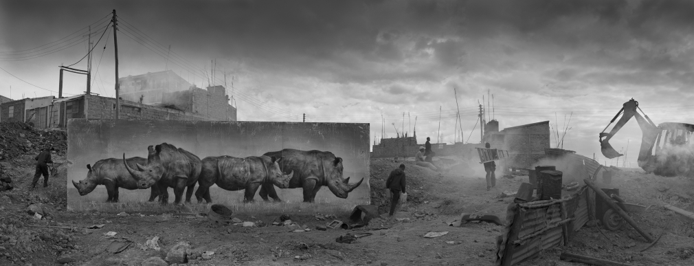 Construction Site with Rhinos, 2015