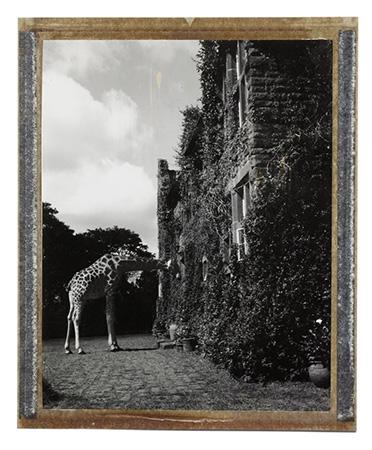 Giraffe Manor, Kenya, 2002