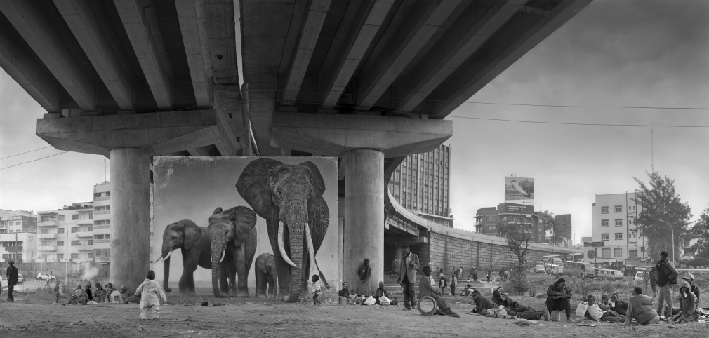 nick brandt underpass with elephants