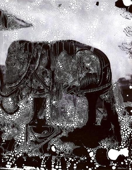 sebastiaan bremer elephant deliberate forgetfulness
