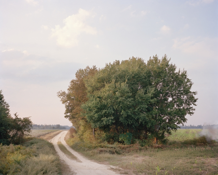 McNair Evans, Cotton Harvest, Archival pigment print, 20 x 25 inches and 32 x 40 inches, Editions of 5