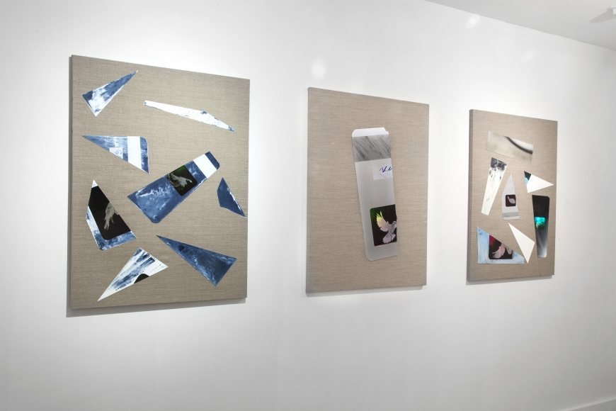 Installation view Chaordic