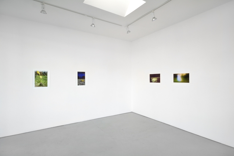 Installation View Sublunary World