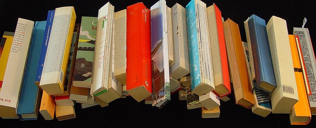 Libri Tranciati, 2006