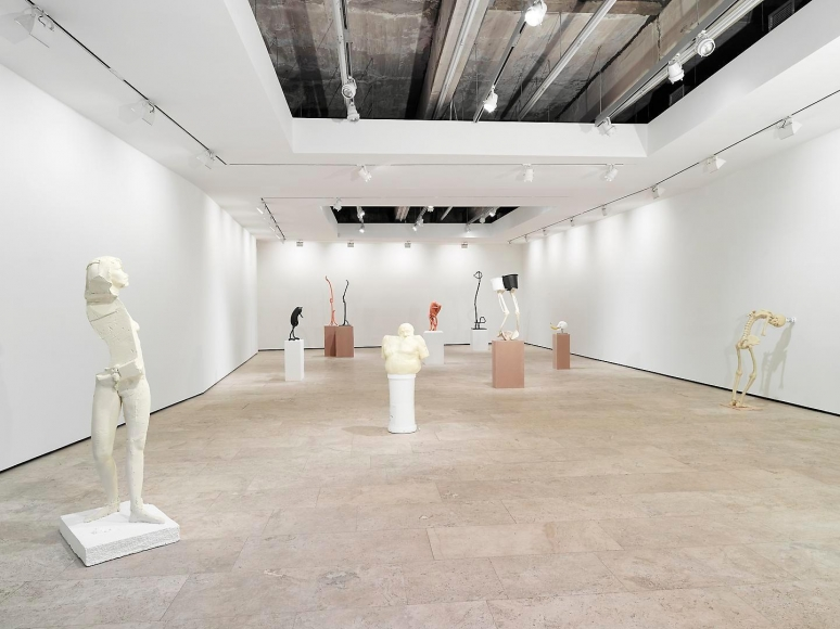 ERWIN WURM: Synthesa Installation view 1