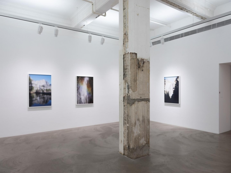 CATHERINE OPIE So long as they are wild installation view 6
