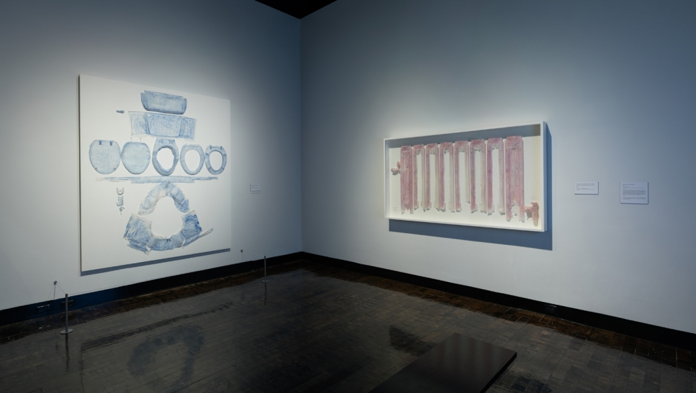 DO HO SUH, Installation view, Frist Art Museum, Do Ho Suh: Specimens, Oct. 12, 2018 - Jan. 6, 2019
