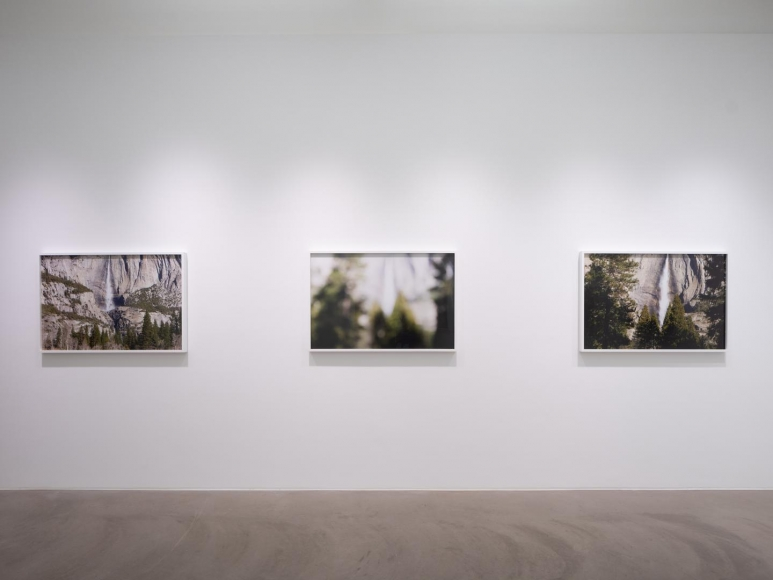 CATHERINE OPIE So long as they are wild installation view 10
