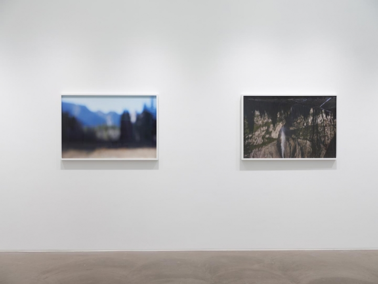CATHERINE OPIE So long as they are wild installation view 11