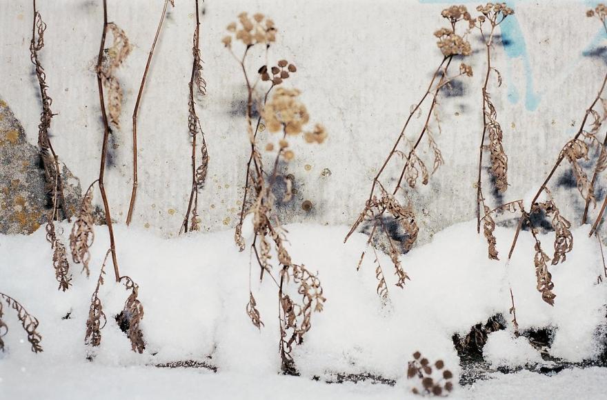 JUERGEN TELLER Nürnberg Winter 5, Nürnberg, 2005