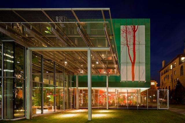 STEFANO ARIENTI Ailanthus, installation view, 2012 Isabella Stewart Gardner Museum