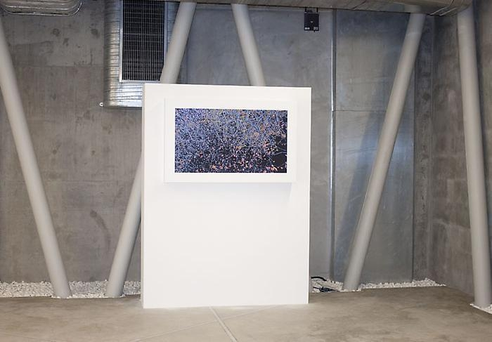 Five in Istanbul Installation View 3