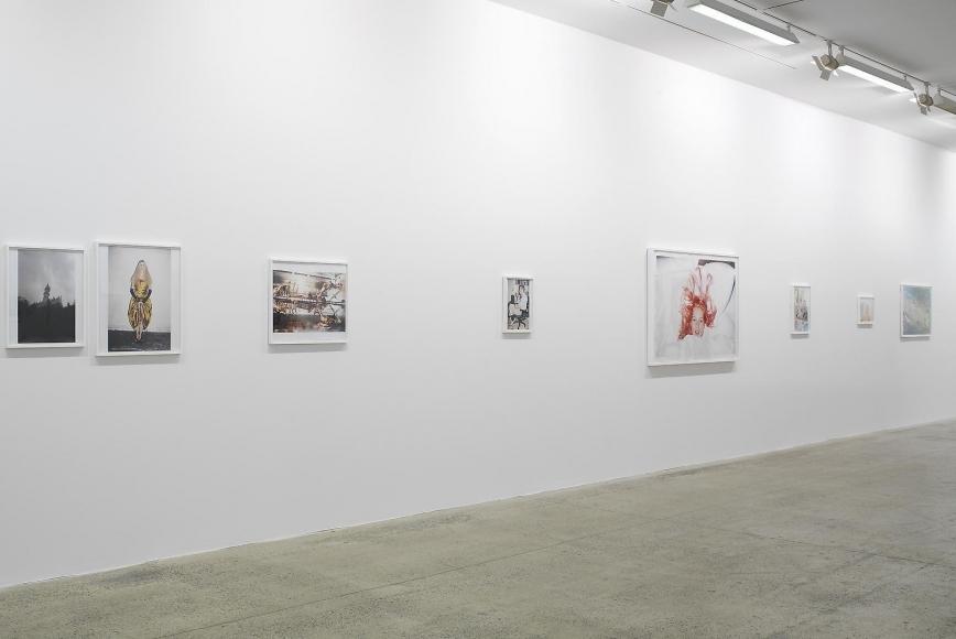 Fondation Cartier pour l'art contemporain, Paris, France