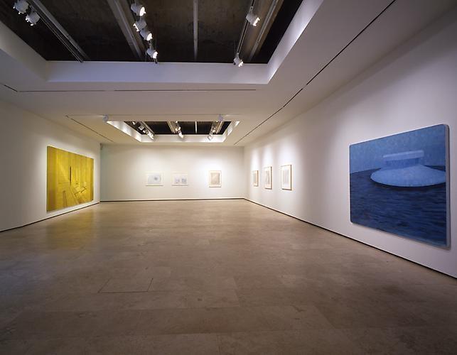 Adriana Varejão installation view 1