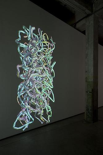 Jennifer Steinkamp Installation View 5
