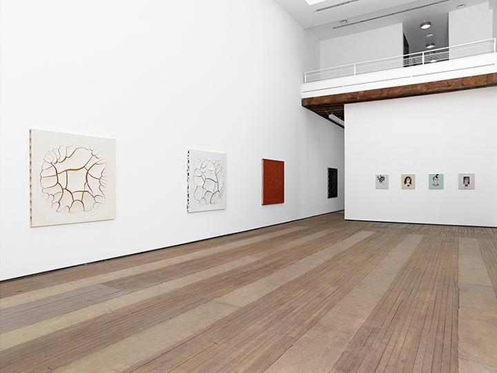 Adriana Varejão, Kindred Spirits Installation view 3