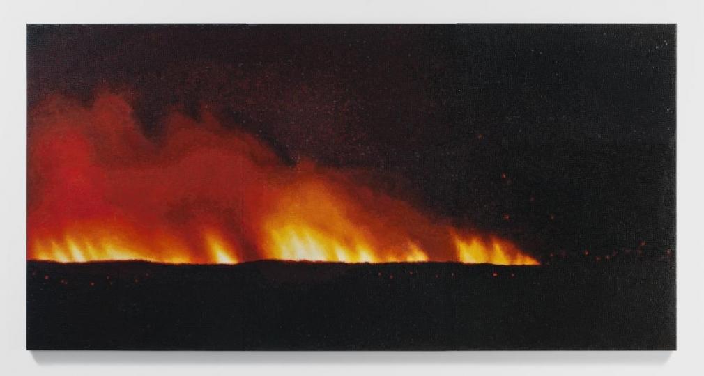 特雷西塔·è²»çˆ¾å—å¾·æ–¯ Fire (America) 2, 2016