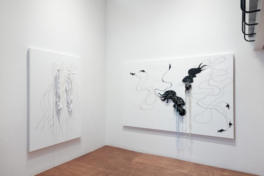 Nicholas Hlobo, Exhibition walkthrough
