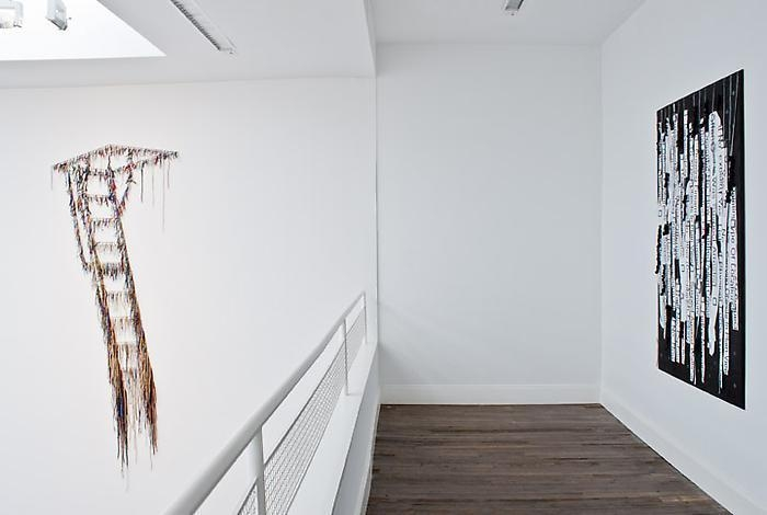NARI WARD Liberty and Orders, installation view 1