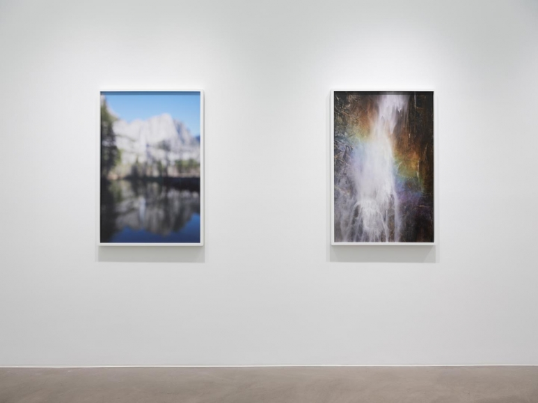CATHERINE OPIE So long as they are wild installation view 9