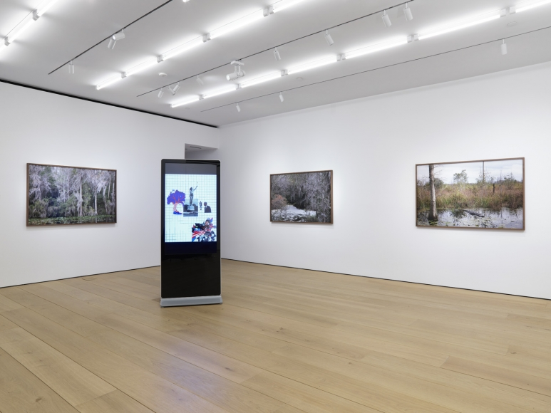 Fifth installation view of the exhibition Catherine Opie: Rhetorical Landscapes at Lehmann Maupin New York