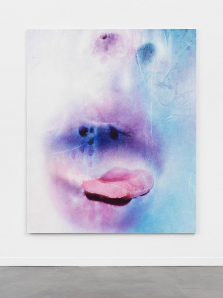 MARILYN MINTER, Deep Frost, 2016