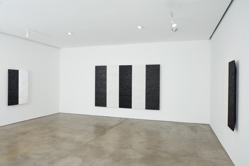 MARY CORSE Installation view 2