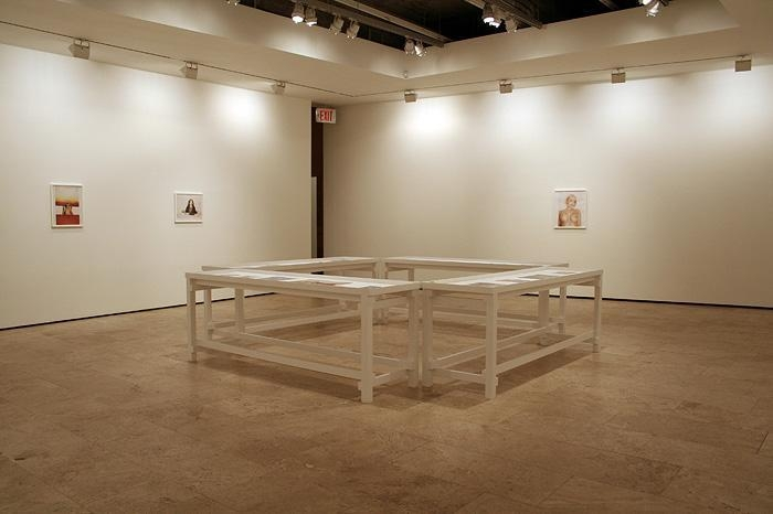 Installation at Lehmann Maupin Gallery