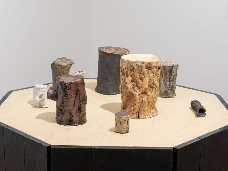 CATHERINE OPIE So long as they are wild installation view 4