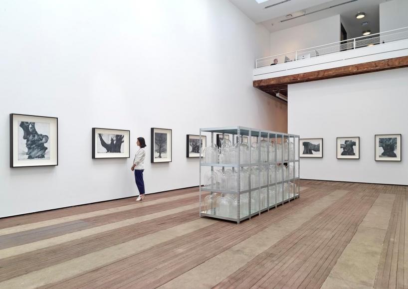 Patrick Van Caeckenbergh Installation view 9