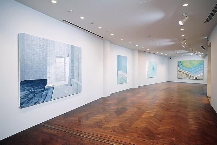 ADRIANA VAREJÃO Hara Museum of Contemporary Art, 2007