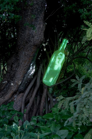 湯尼·å¥§æ–¯å‹' Gin, Project for Physic Garden, 2009