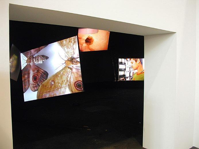 Art Unlimited Kutlug Ataman, Stefan's Room, 2004