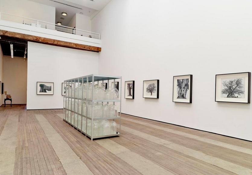 Patrick Van Caeckenbergh Installation view 7