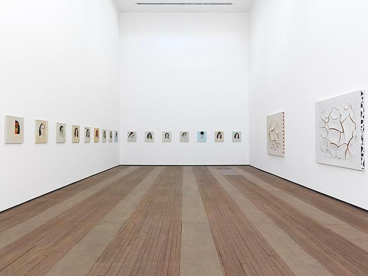 Adriana Varejão, Kindred Spirits Installation view 1