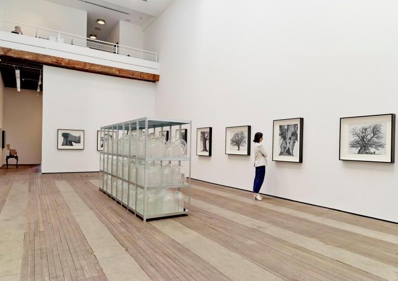 Patrick Van Caeckenbergh Installation view 8