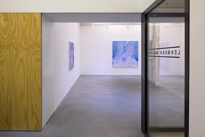 Shirazeh Houshiary: Through Mist Installation view 2