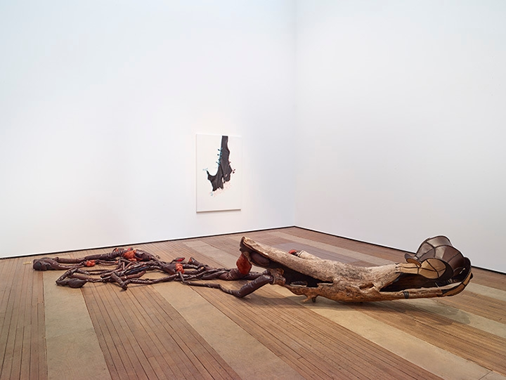 Nicholas Hlobo installation view 2