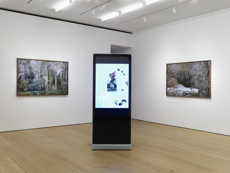 Fourth installation view of the exhibition Catherine Opie: Rhetorical Landscapes at Lehmann Maupin New York