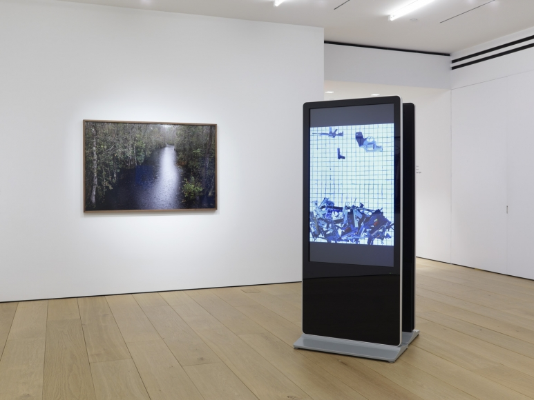 Sixth installation view of the exhibition Catherine Opie: Rhetorical Landscapes at Lehmann Maupin New York
