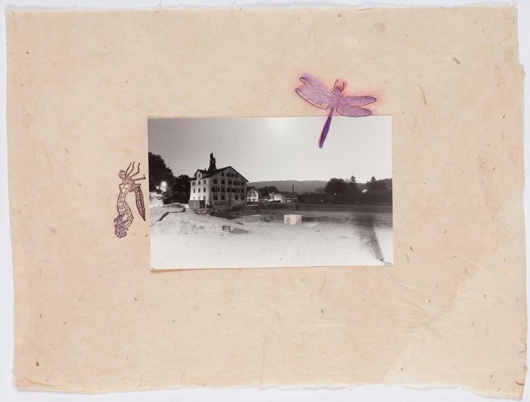 海蒂·å¸ƒèµ« Der Schlüpfakt der Parkett Libelle, 1981
